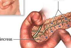 cirugia-pancreas-cirujano-oncologo-cancun.jpg