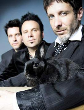 I Mercury Rev