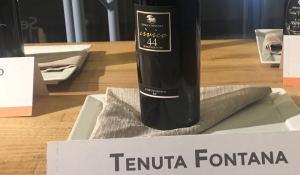 Tenuta Fontana 1