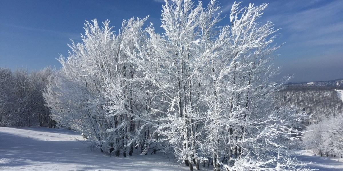 #4 | Skiën in de Vogezen