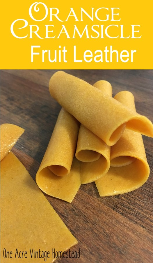 Orange Creamsicle Fruit Leather
