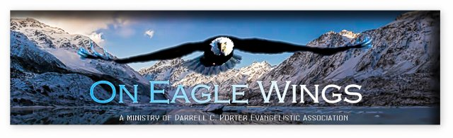 On Eaglewings banner