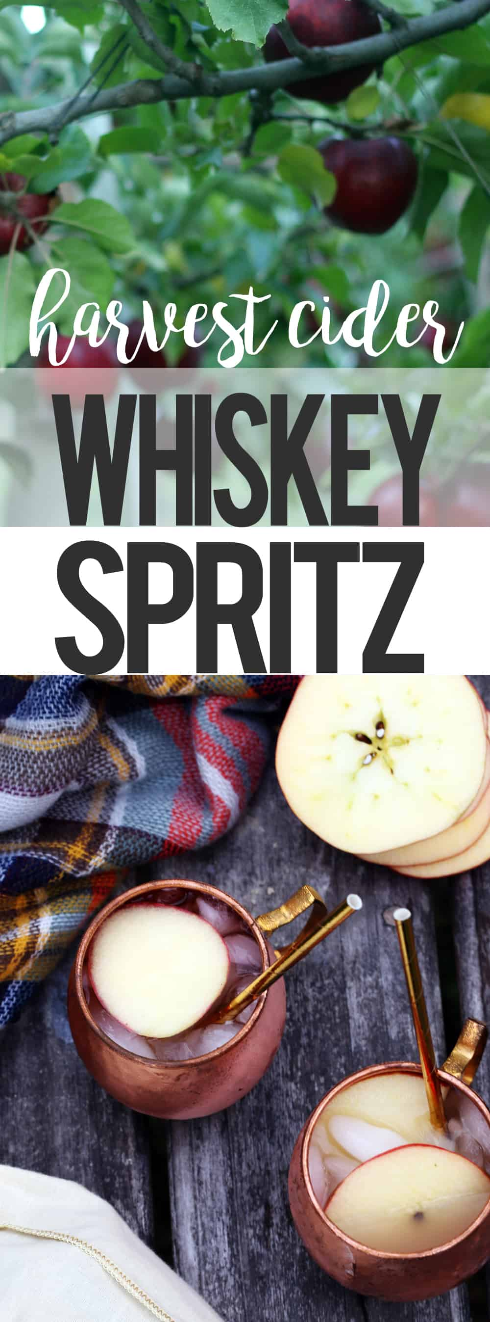 #CollectiveBias #thewhiskey5 Harvest Cider Whiskey Spritz #ad MSG 4 21+ cocktail fall winter cider apples whiskey