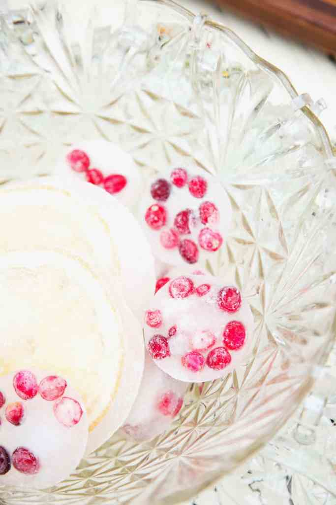 cranberry ice and large grapefruit slices in ice for Cranberry Citrus Paloma Punch
