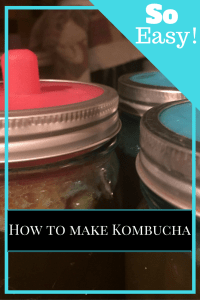 pickle pipe guide to homemade kombucha
