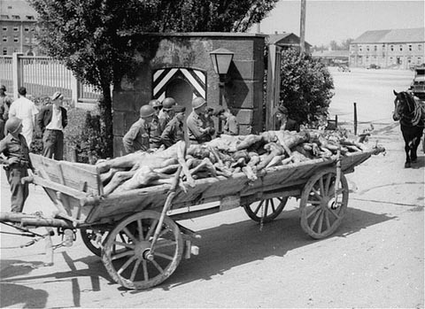 Holocaust Dead
