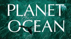 Planet Ocean Video Thumbnail, Video Cover