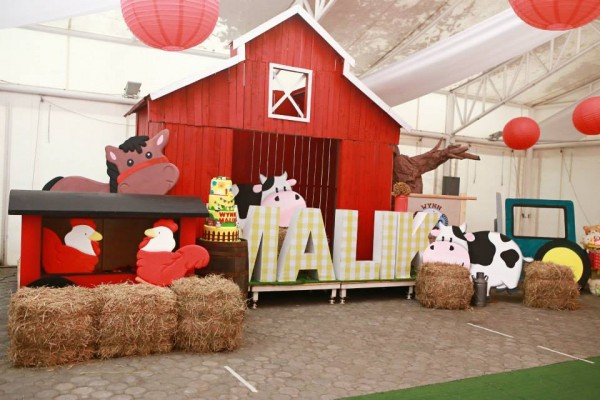 Farm Themed Birthday Party - 07