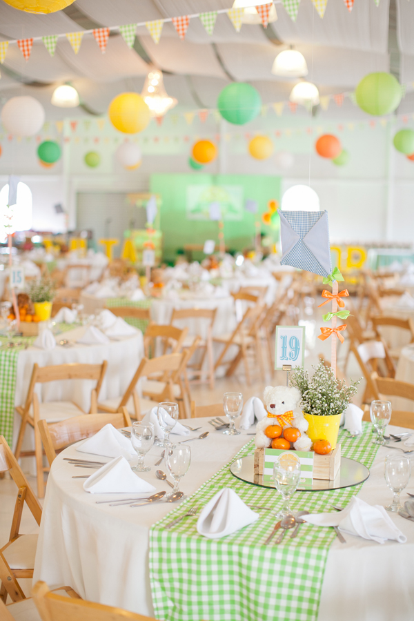 Picnic Themed Birthday Party - 01