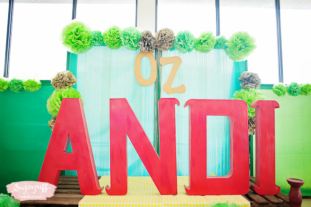 Wizard of Oz Birthday Party - 25