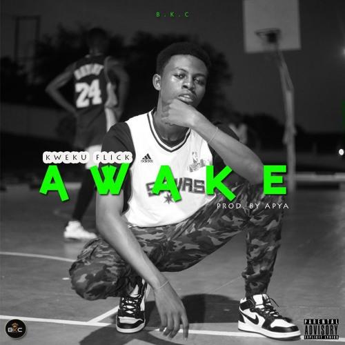 Kweku Flick - Awake (Prod by Apya)