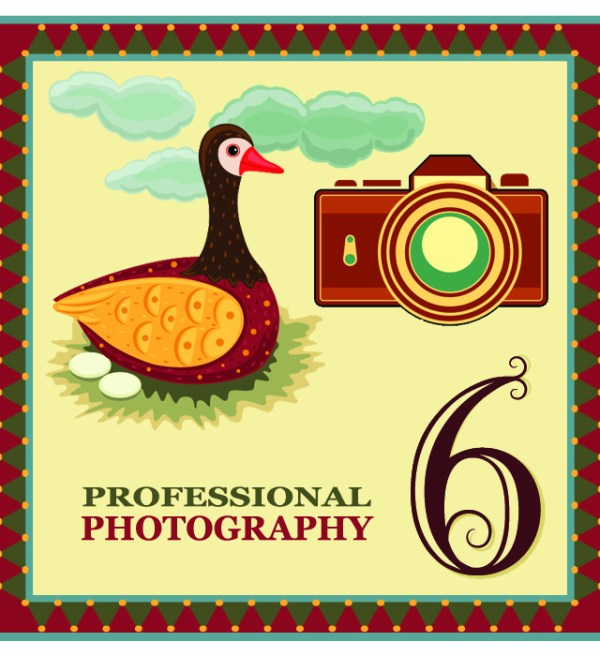 "On the sixth day of Christmas my web strategist said to me - ""Professional photography is important. Invest in some high quality pictures of yourself and your products."""