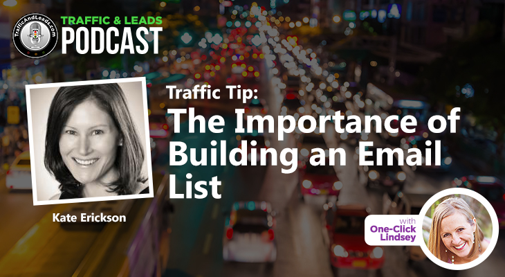 Traffic and Leads Podcast: The Importance of Building an Email List