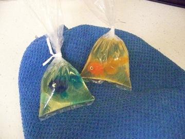 Fish Soap Tutorial