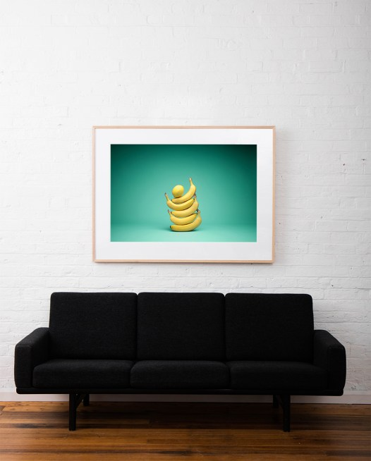 Large Still Life photo of a lemon on top of 5 bananas framed in raw timber on white wall above sofa