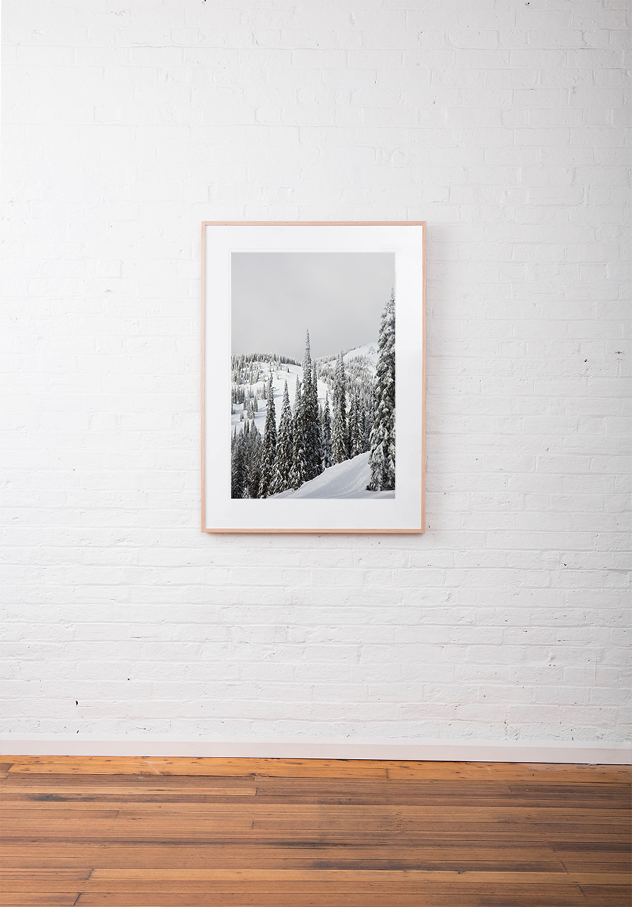 Large vertical photo of North American Landscape of snow, mountains,and trees in shade of green, black and white framed in black timber on white wall