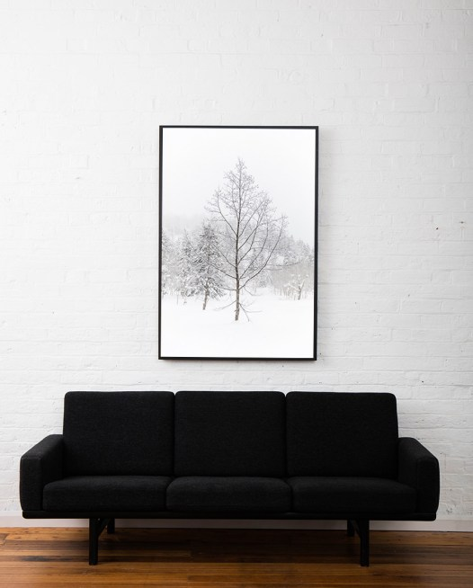 A photographic print of a forest of trees covered in snow framed in black timber above sofa