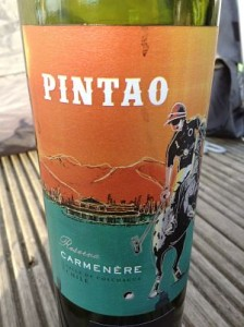 Pintao reserva carmenere wine review