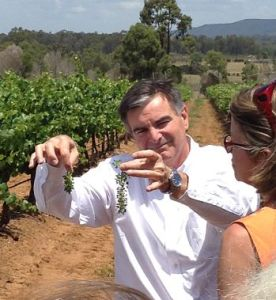 Neil McGuigan winemaker Hunter Valley vineyards