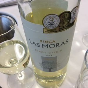 Argentina Finca Las Moras Pinot Grigio