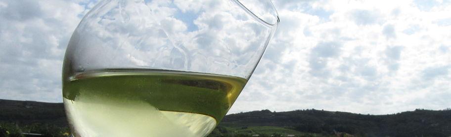exploring soave wine