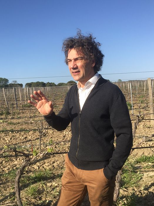 Jean-Claude Mas vineyards