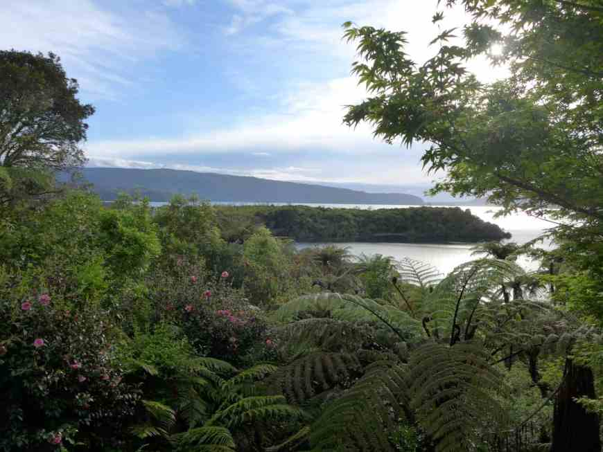 The view from our cabin outside of Rotorua New Zealand