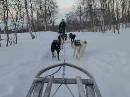 How to go dog sledding in the Arctic | Why it's a must and how to plan your trip to Tromso, what to do in Tromso, what to do in Norway, Norway trip planning tips | Tromso is 200 miles north of the Arctic Circle & perfect to visit for the Northern Lights and more! #dogsledding #tromso #norway