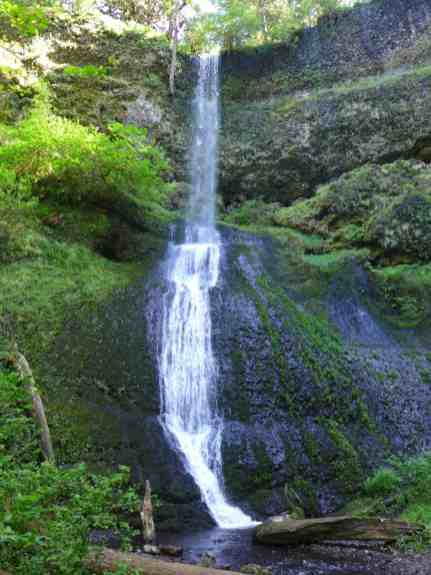 Winter Falls | Oregon's Trail of Ten Falls doesn't get as much attention as Multomnah, but it's totally stunning and offers 10 waterfalls, a moderately easy hike, and is easy driving distance from Portland | why you should hike the Trail of 10 Falls in Silver Falls State Park #oregon #waterfalls #trailoftenfalls