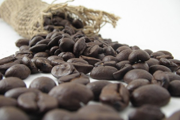 coffee beans climate change