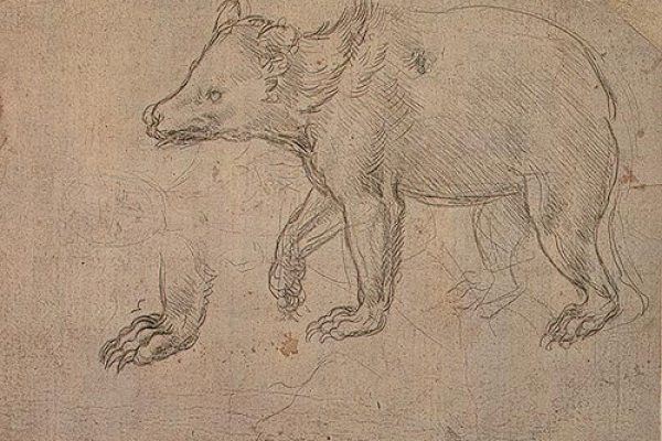 Leonardo Da Vinci: The First Animal Rights Activist?
