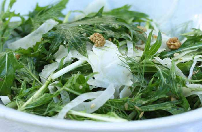 Recipe: Mizuna, Fennel, and Mulberry Salad