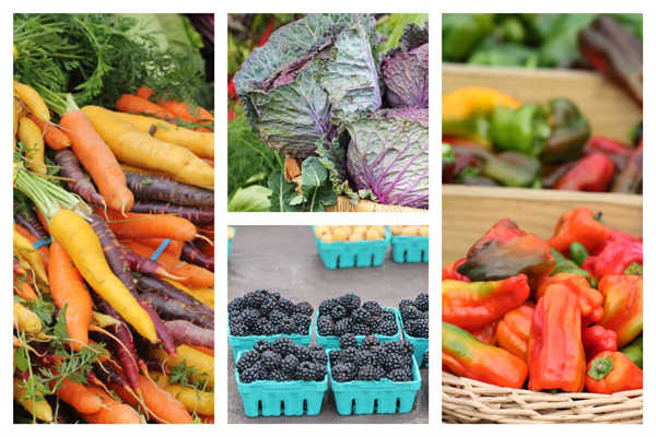 Shopping at the Farmers Market: Your Questions Answered