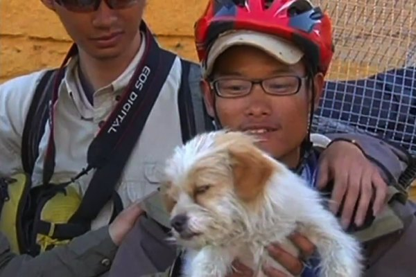 WATCH: Dog Runs With Chinese Cyclists for 1100 Miles to Tibet