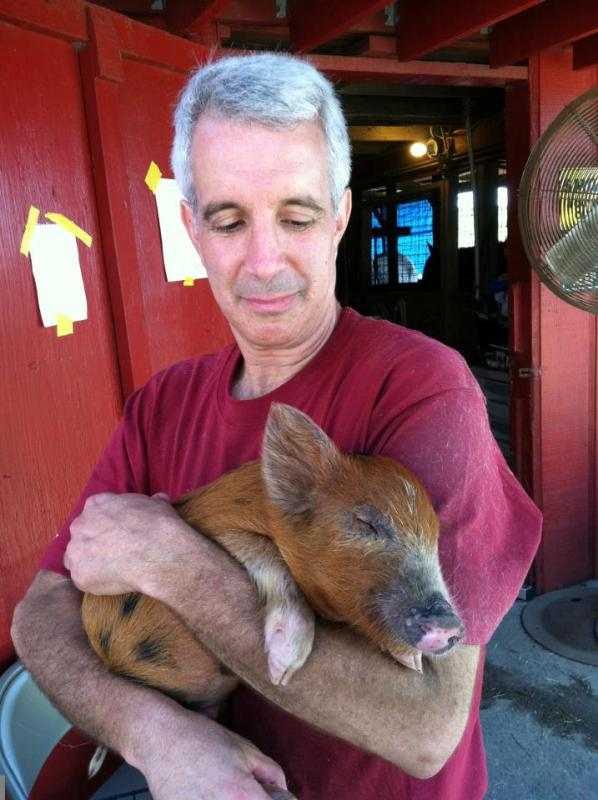 12 Photos that Prove Farm Animals Love Us