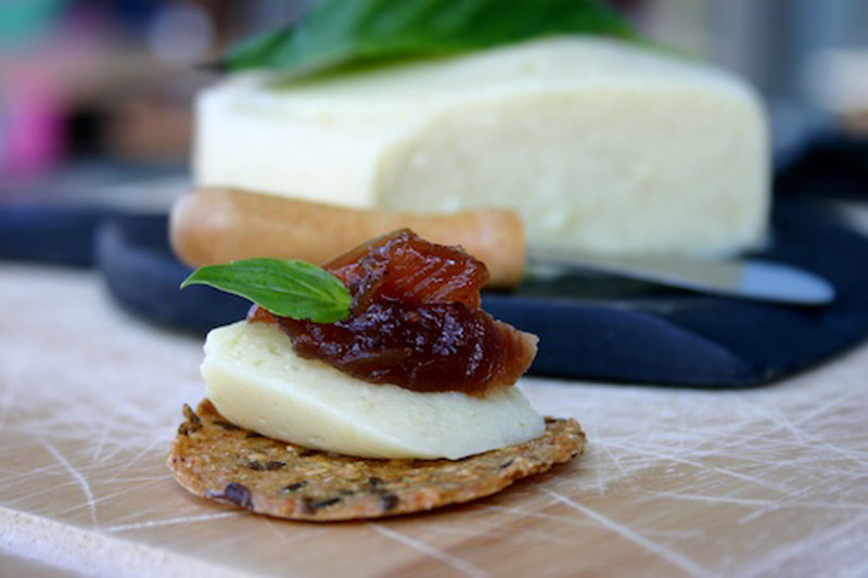 10 Vegan Cheeses to Add in your Epic Grilled Cheese Sandwich