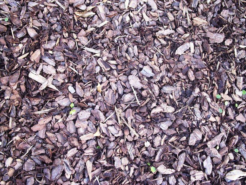 A Quick Guide to Mulching Your Garden