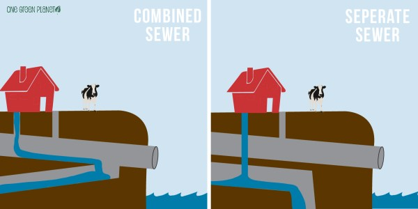 The Gross Way Water Pollution From Livestock Effects You