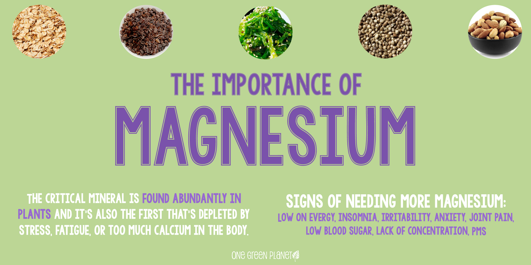 Magnesium containing plant and animal products 23
