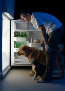 man_dog_fridge