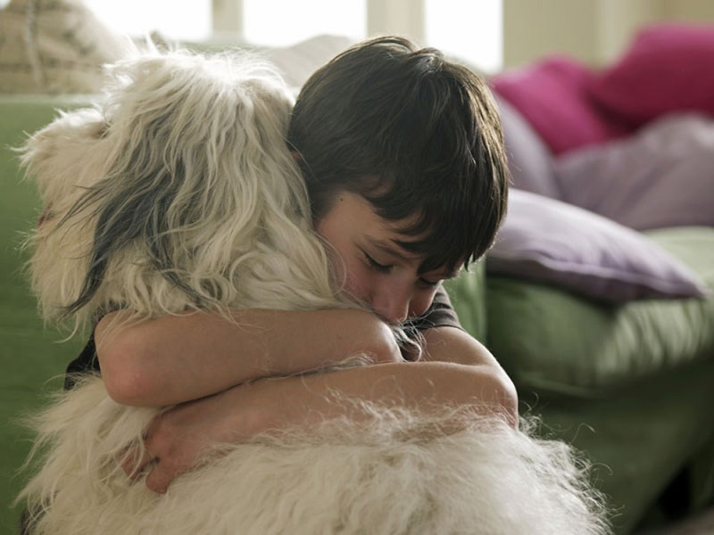 7 Reasons to Adopt Your Next Furry Best Friend