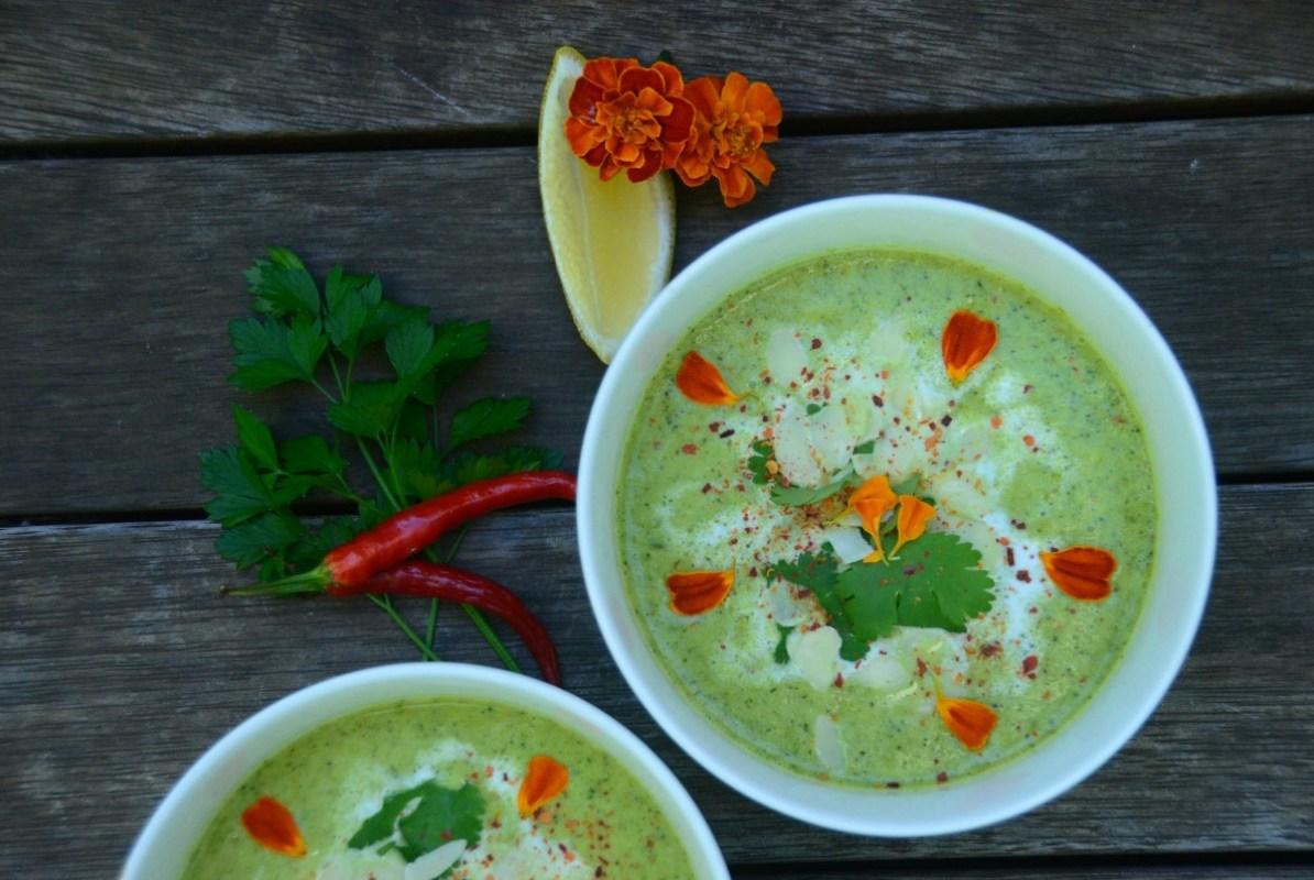 soup2-1194x800