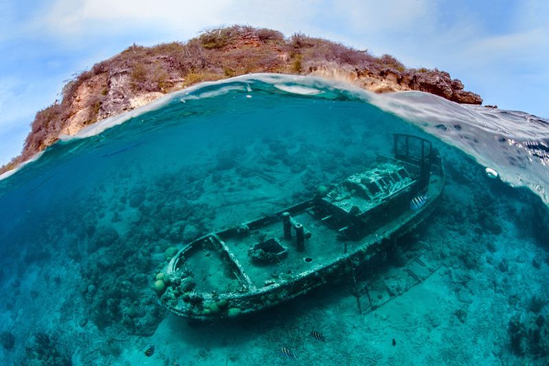 Awe-Inspiring Images From Underwater Photography Contest Remind us Exactly Why we Need to #CrushPlastic TODAY