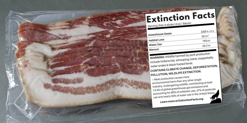 Extinction Facts Labels Expose What Our Meat Addiction Means for Wildlife