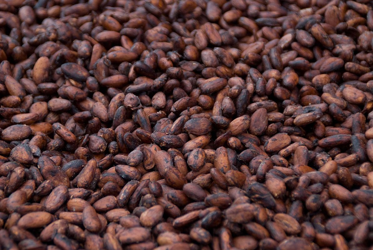 5 Magical Ways To Enjoy Healthy Cacao Beans