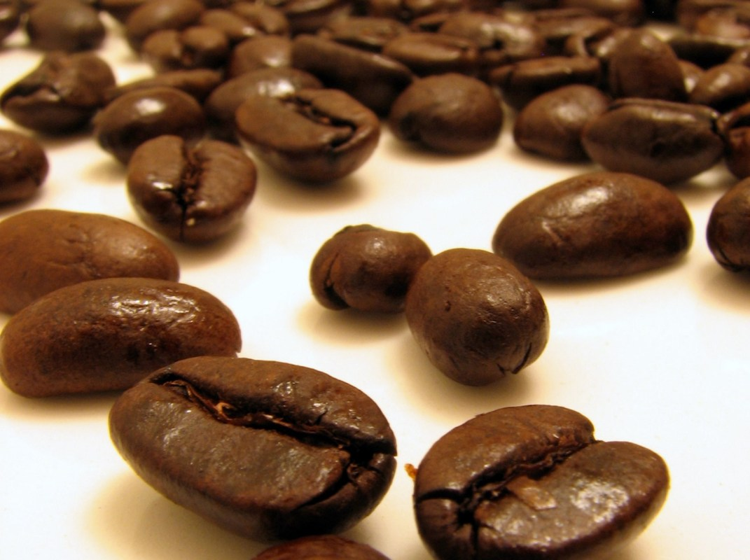 Fair Trade and Organic Food | Traidcraft Online Shop