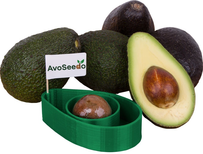want to grow your own avocados now you can with this new product one green planet. Black Bedroom Furniture Sets. Home Design Ideas