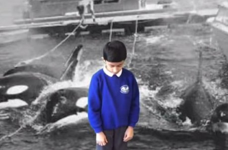10 Children Will Share This Emotional Anti-Captivity Message at European Parliament