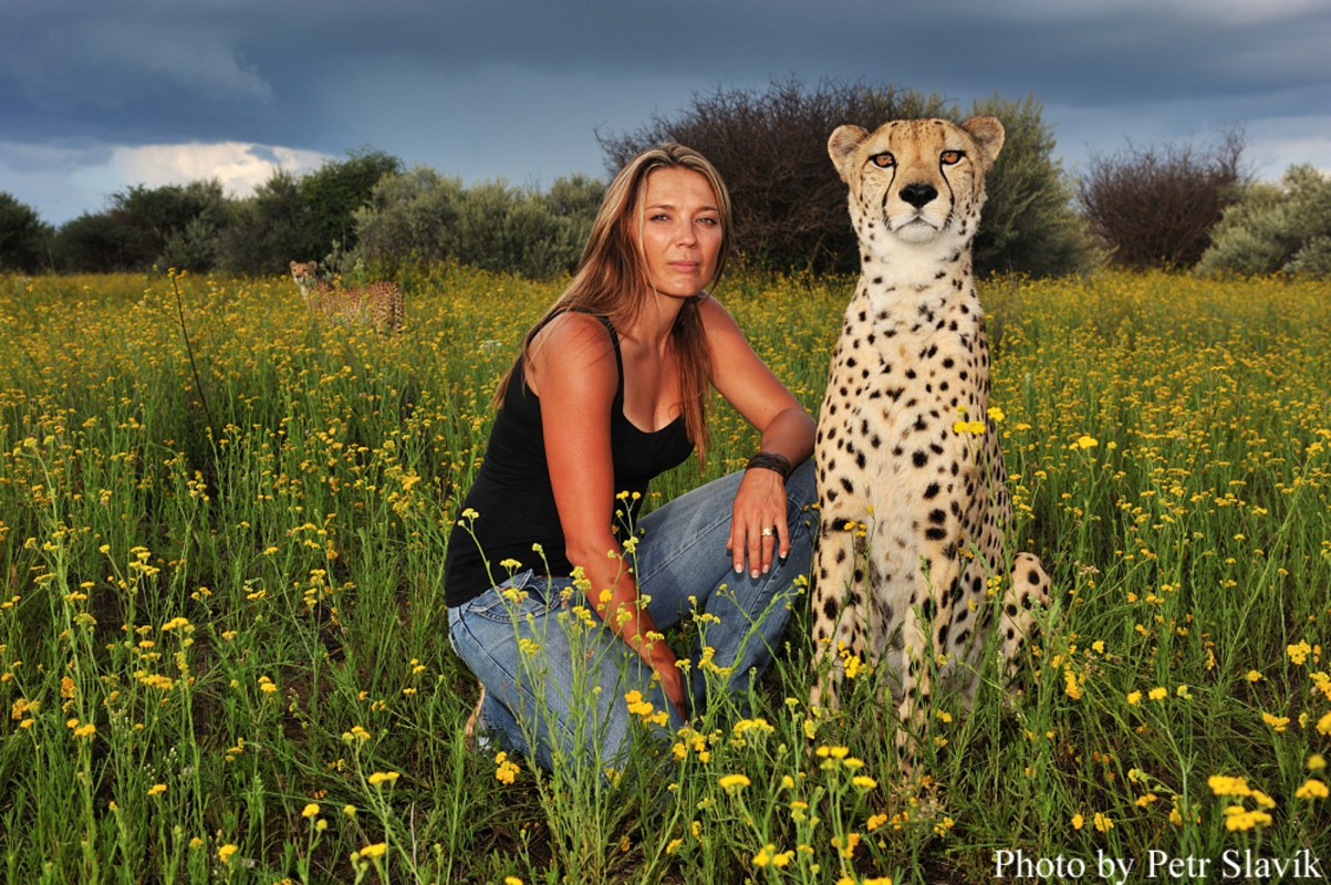 2898a7cbd9 Meet the Incredible Woman Who Is Working to Protect Namibia s Endangered  Cheetahs - One Green PlanetOne Green Planet