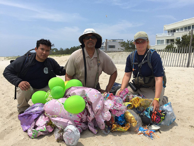 The Devastating Effects Balloon Releases Have on Wildlife and Marine Animals and What You Can Do About It